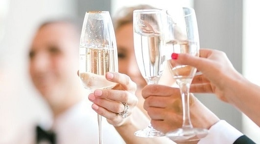 A toast is given at elegant Vermont Wedding